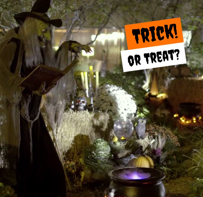 Trick! or Treat? Happy Halloween