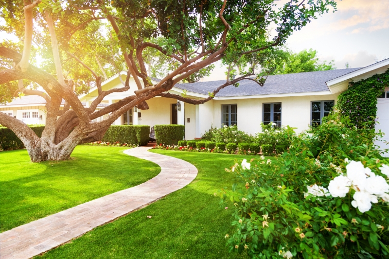 Let us be the stepping stone to the home of your dreams!