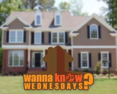 Resolutions for New Homeowners ( What You Want To Know Wednesdays )